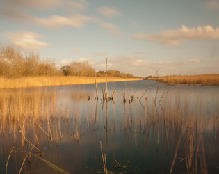 Lake at Somerset Levels